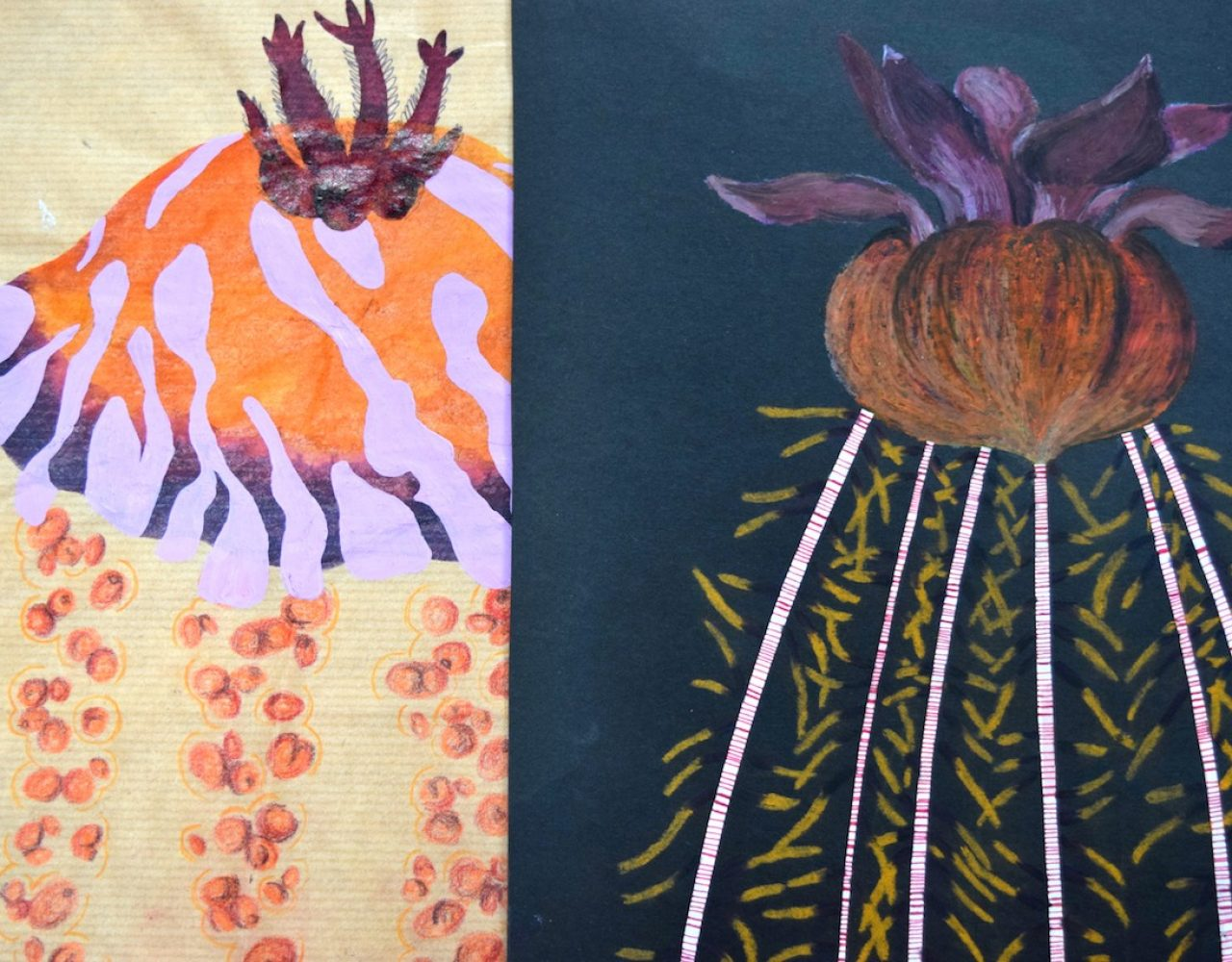 Flower Pot Coral Drawings 04