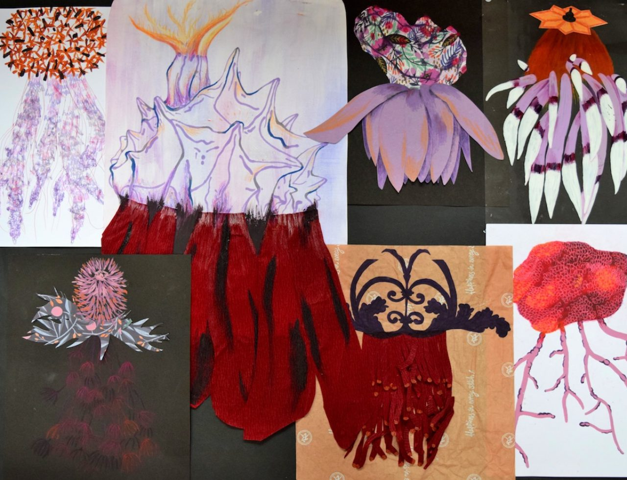 Flower Pot Coral Drawings 05